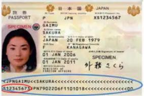 パスポート見本